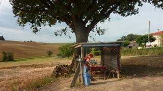compostelle-2012-08-22-09h54m58